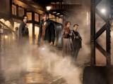 Magične živali - kmalu v kinu; vir: imdb